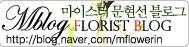 플로리스트 마이스터 문현선 블로그