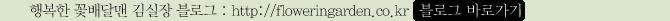 행복한꽃배달맨김실장 블로그 바로가기